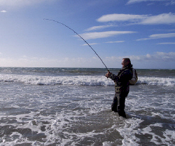 Bass fishing at Rosslare Strand